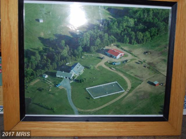 31 Plantation Place Drive, Martinsburg, WV 25404 (#BE10018625) :: LoCoMusings