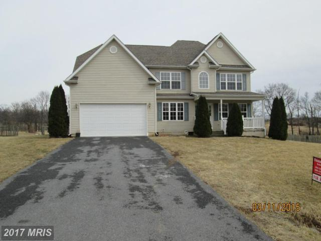 85 Prune Lane, Martinsburg, WV 25403 (#BE10018761) :: LoCoMusings