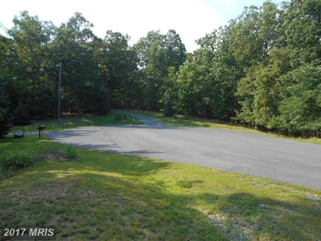 Passage Terrace Way, Gerrardstown, WV 25420 (#BE10024031) :: Pearson Smith Realty