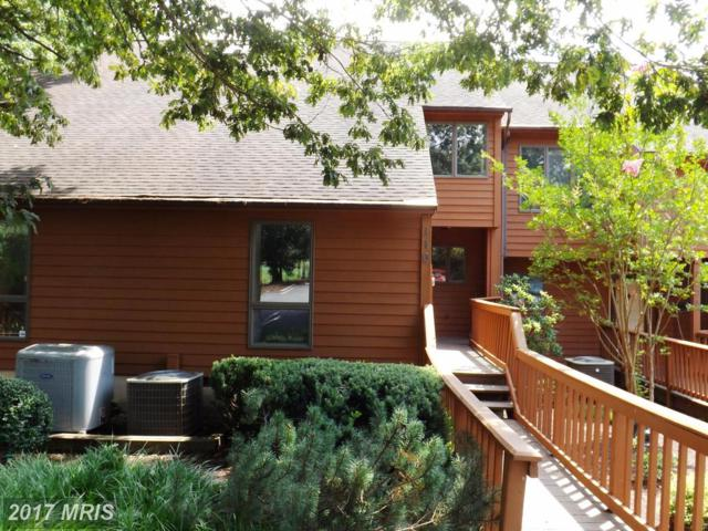 110 Tecumseh Trail, Hedgesville, WV 25427 (#BE10025686) :: Pearson Smith Realty