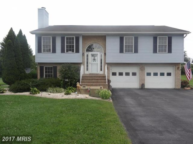 213 Michelle Drive, Hedgesville, WV 25427 (#BE10029239) :: Pearson Smith Realty