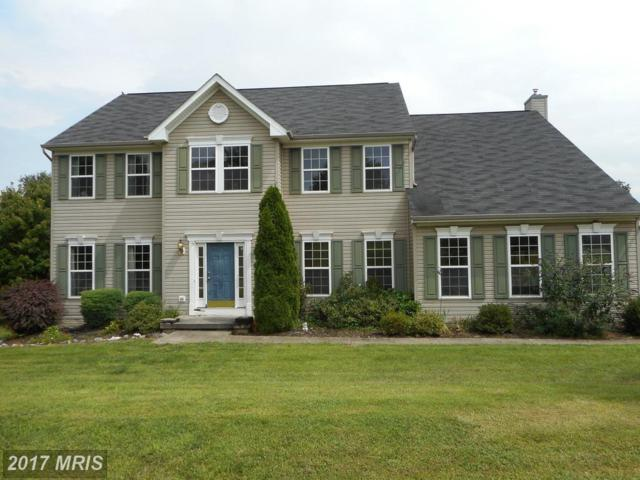 18 Drumwood Road, Martinsburg, WV 25403 (#BE10032113) :: Pearson Smith Realty