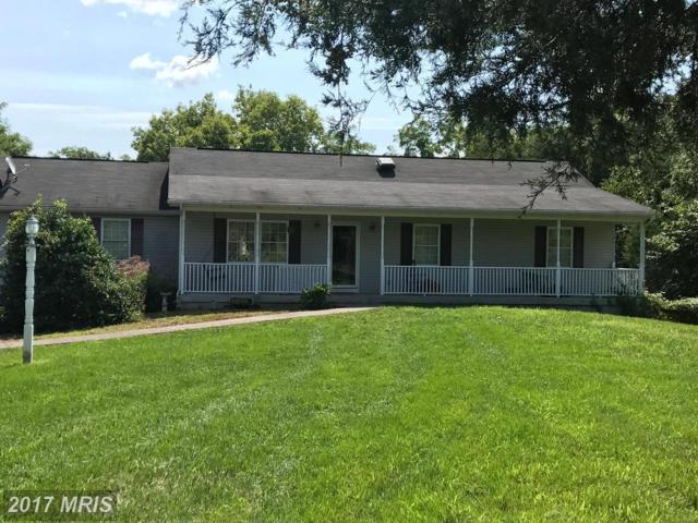 67 Mandela Road, Shepherdstown, WV 25443 (#BE10036626) :: RE/MAX Cornerstone Realty
