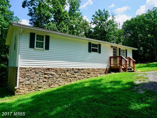204 Raccoon Lane, Gerrardstown, WV 25420 (#BE10037684) :: LoCoMusings