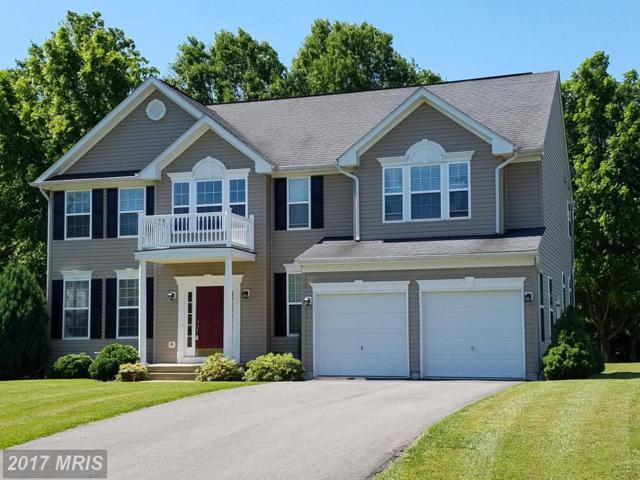 174 Rippling Waters Way, Falling Waters, WV 25419 (#BE10045216) :: Pearson Smith Realty