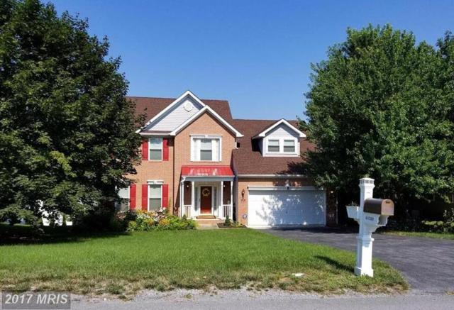 272 Larkspur Lane, Martinsburg, WV 25403 (#BE10050163) :: Pearson Smith Realty