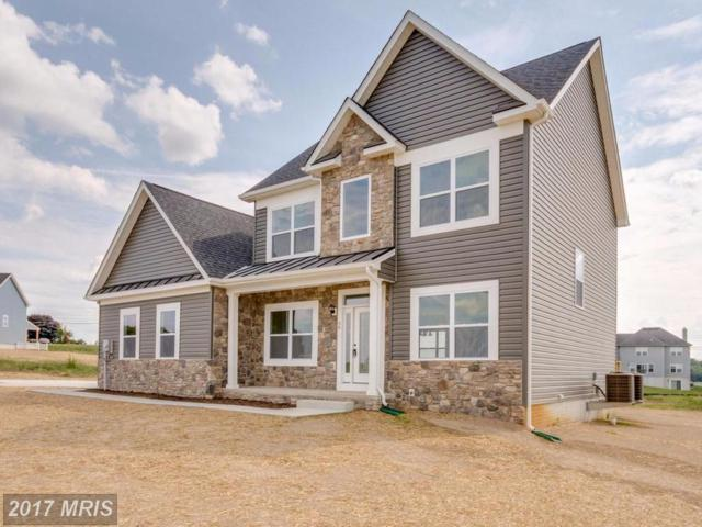 Niagra Court, Falling Waters, WV 25419 (#BE10051486) :: Pearson Smith Realty