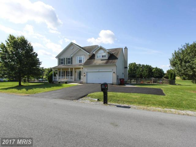 293 Holden Drive, Martinsburg, WV 25403 (#BE10052371) :: Pearson Smith Realty
