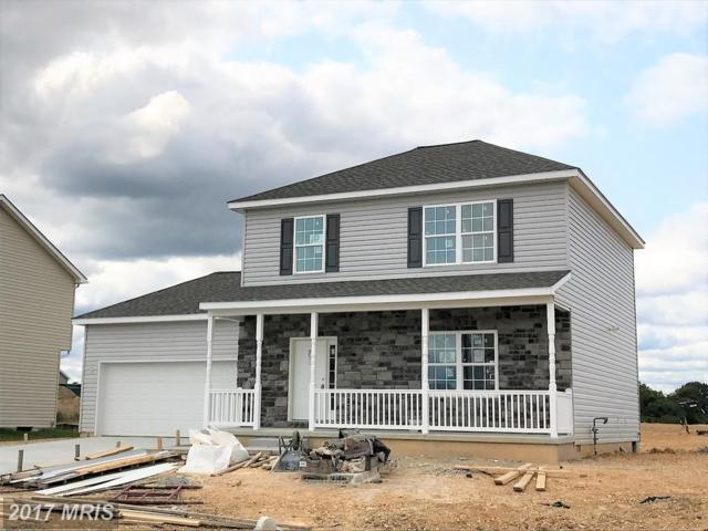 133 Finney Drive, Martinsburg, WV 25405 (#BE10053441) :: Pearson Smith Realty