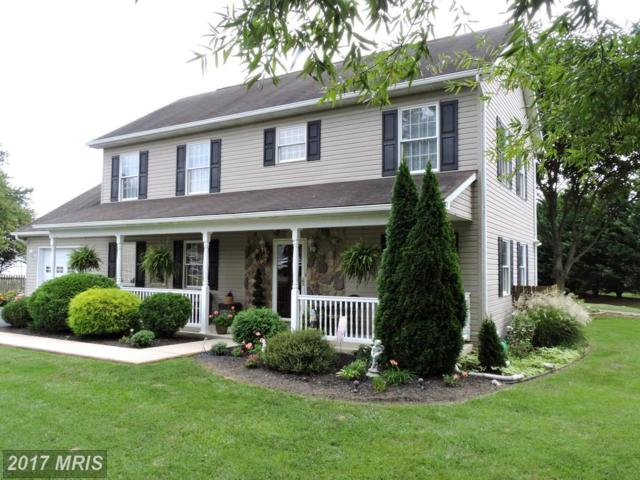 163 Stanford Lane, Falling Waters, WV 25419 (#BE10057517) :: Pearson Smith Realty