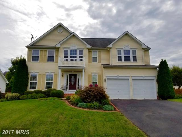 361 Quality Terrace, Martinsburg, WV 25403 (#BE10057734) :: Pearson Smith Realty
