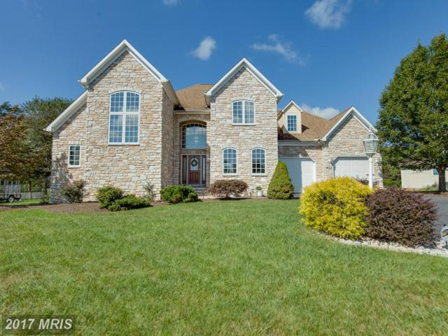 452 Peacepipe Lane, Hedgesville, WV 25427 (#BE10058928) :: Pearson Smith Realty