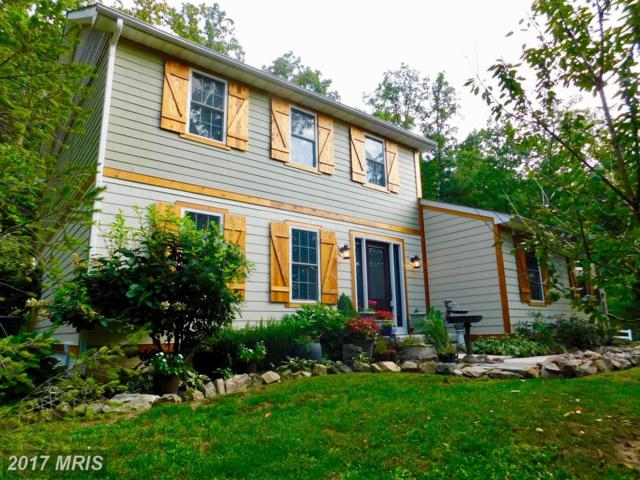 159 Warner Lane, Hedgesville, WV 25427 (#BE10060396) :: Pearson Smith Realty