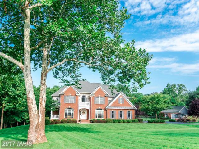 241 Chesapeake Lane, Hedgesville, WV 25427 (#BE10062225) :: Pearson Smith Realty