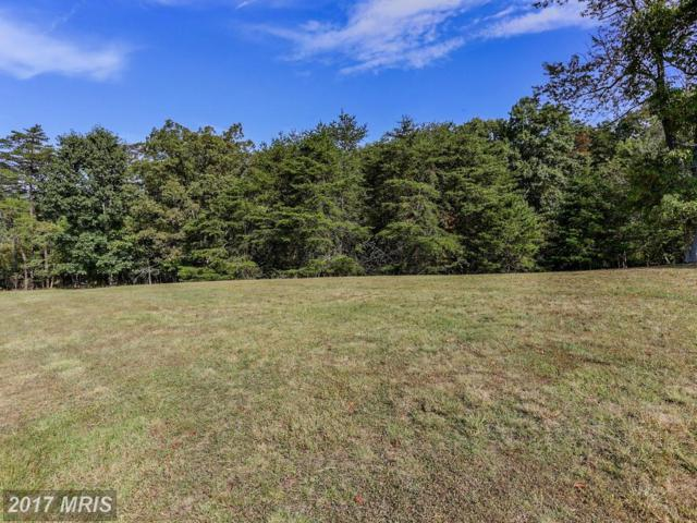 Amethyst Lane, Hedgesville, WV 25427 (#BE10064092) :: Pearson Smith Realty