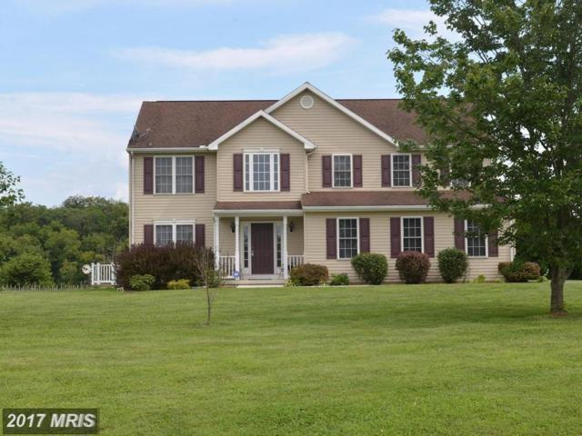 110 Dorchester Drive, Falling Waters, WV 25419 (#BE10067718) :: LoCoMusings