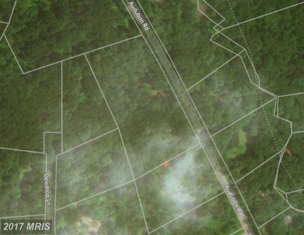 Audubon Road, Hedgesville, WV 25427 (#BE10067958) :: LoCoMusings