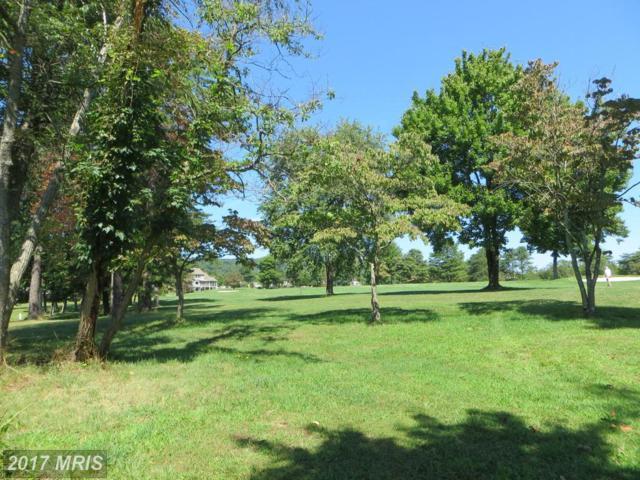 Nokomis Trail, Hedgesville, WV 25427 (#BE10071068) :: LoCoMusings