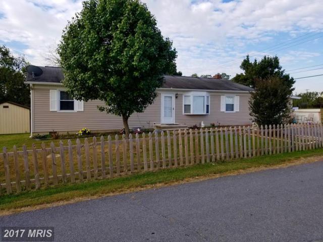 10 Zeiler Drive, Martinsburg, WV 25404 (#BE10075239) :: LoCoMusings