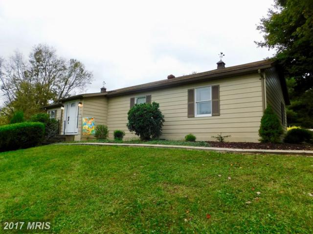 292 Carlyle Road, Martinsburg, WV 25404 (#BE10080684) :: Pearson Smith Realty