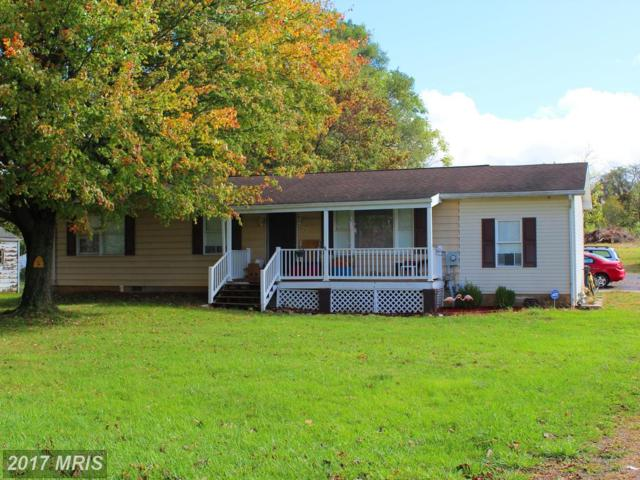 108 Brookdale Avenue, Martinsburg, WV 25401 (#BE10088910) :: Pearson Smith Realty