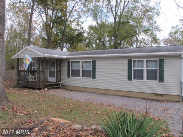 294 Burnside Drive, Falling Waters, WV 25419 (#BE10098627) :: Pearson Smith Realty