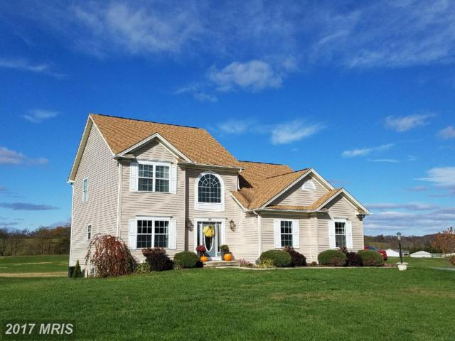 43 Chisholm Drive, Hedgesville, WV 25427 (#BE10102248) :: Pearson Smith Realty