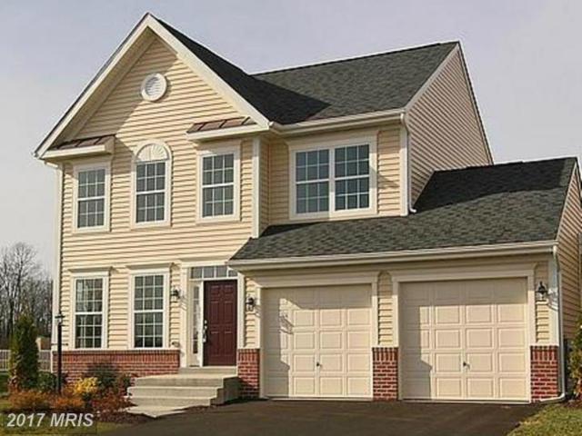 0 Bashore Drive, Martinsburg, WV 25404 (#BE10103480) :: Pearson Smith Realty