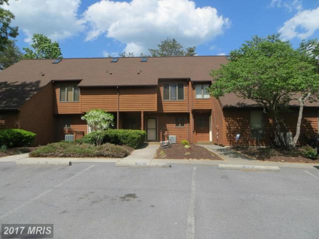 262 Tecumseh Trail, Hedgesville, WV 25427 (#BE10114153) :: Pearson Smith Realty