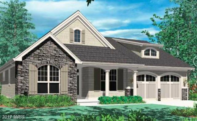 41 Stayman Drive, Falling Waters, WV 25419 (#BE10115822) :: Pearson Smith Realty