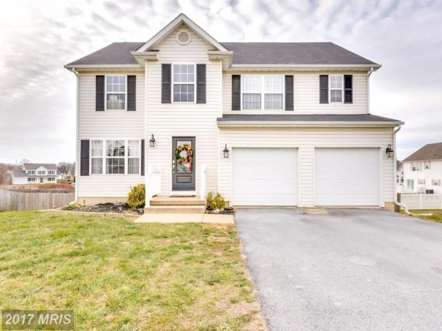 65 Coot Lane, Martinsburg, WV 25405 (#BE10119615) :: Pearson Smith Realty