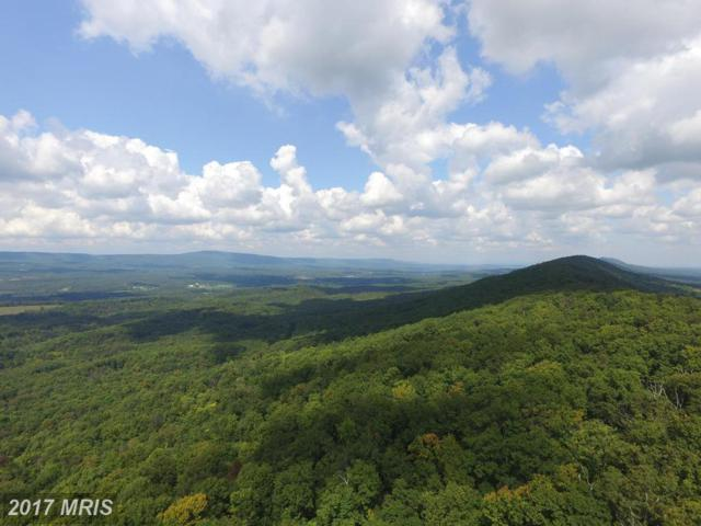 70 Driftwood Drive, Gerrardstown, WV 25420 (#BE10124268) :: Pearson Smith Realty