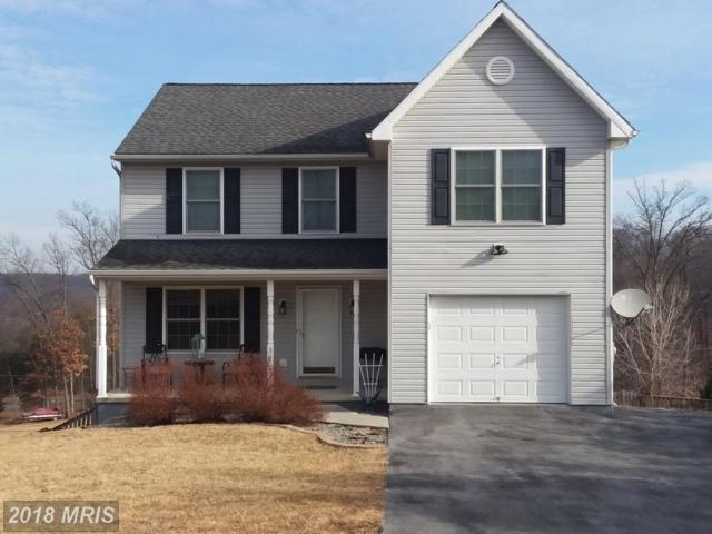 377 Michigan Drive, Falling Waters, WV 25419 (#BE10154483) :: The Gus Anthony Team
