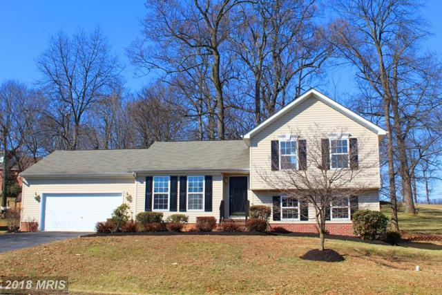 919 Talisman Drive, Martinsburg, WV 25403 (#BE10161869) :: Hill Crest Realty