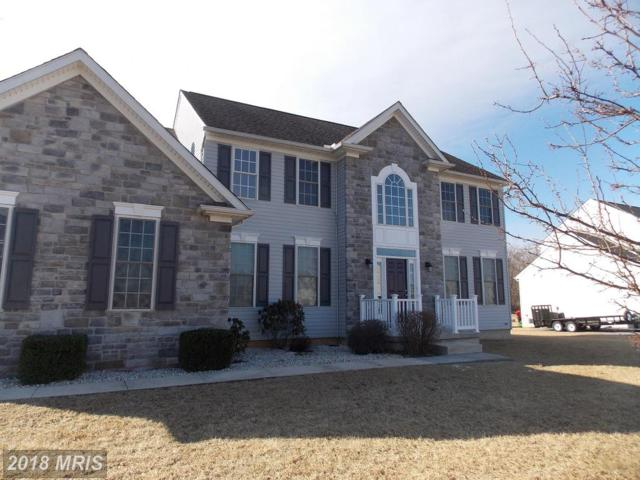 219 Dorchester Drive, Falling Waters, WV 25419 (#BE10161946) :: Hill Crest Realty