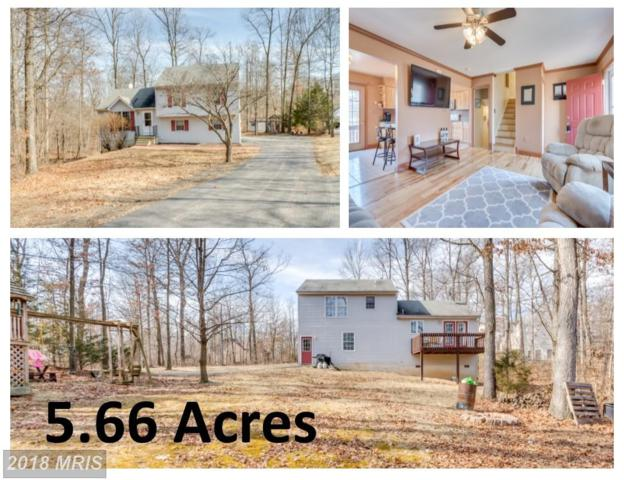 553 Forevergreen Drive, Falling Waters, WV 25419 (#BE10162814) :: Hill Crest Realty