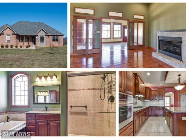 50 Conococheague Lane, Hedgesville, WV 25427 (#BE10168865) :: The Gus Anthony Team