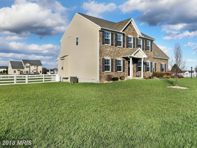 39 Tinning Court, Hedgesville, WV 25427 (#BE10200659) :: The Dwell Well Group