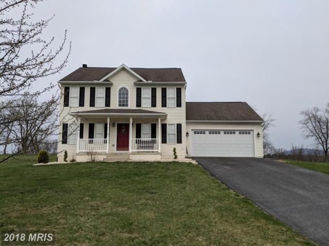 281 Berkshire Drive, Falling Waters, WV 25419 (#BE10201950) :: Pearson Smith Realty