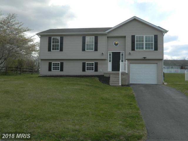 116 Crooked Oak Way, Martinsburg, WV 25405 (#BE10220271) :: Pearson Smith Realty