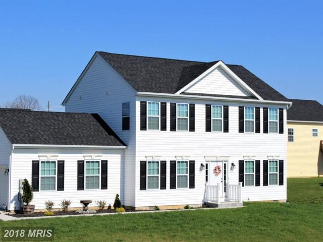 25 Piping Plover Way, Martinsburg, WV 25405 (#BE10228016) :: The Gus Anthony Team