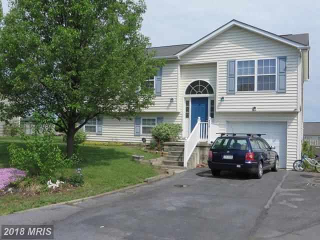 509 Thoreau Drive, Inwood, WV 25428 (#BE10231168) :: The Gus Anthony Team