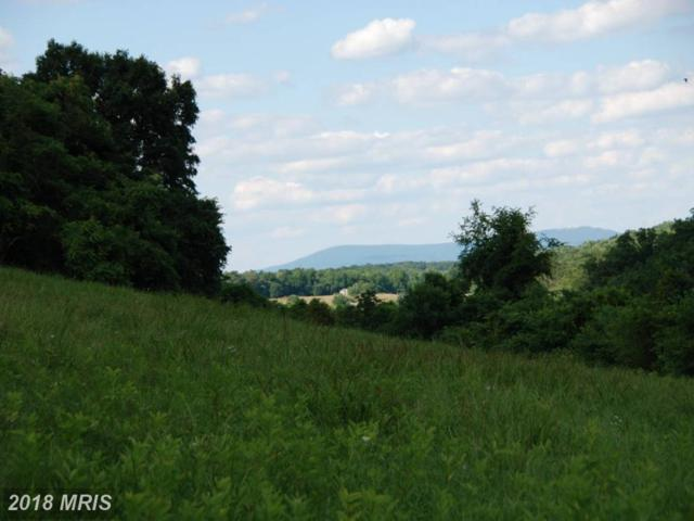 Lot A2 Rooney Road, Hedgesville, WV 25427 (#BE10251788) :: Hill Crest Realty
