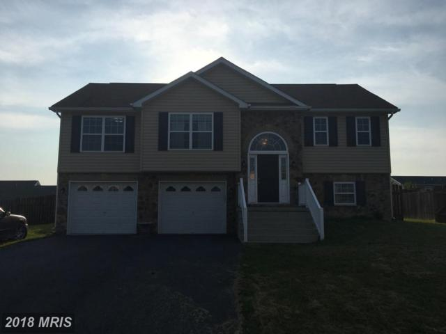 199 Wallace Avenue, Inwood, WV 25428 (#BE10275163) :: The Gus Anthony Team