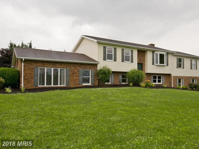 111 Stilwell Farm Lane, Falling Waters, WV 25419 (#BE10277586) :: The Gus Anthony Team