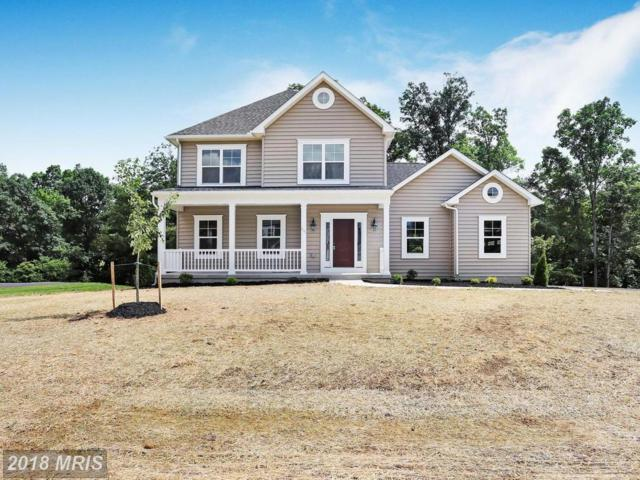 235 Tributary Trail, Falling Waters, WV 25419 (#BE10284557) :: Bob Lucido Team of Keller Williams Integrity