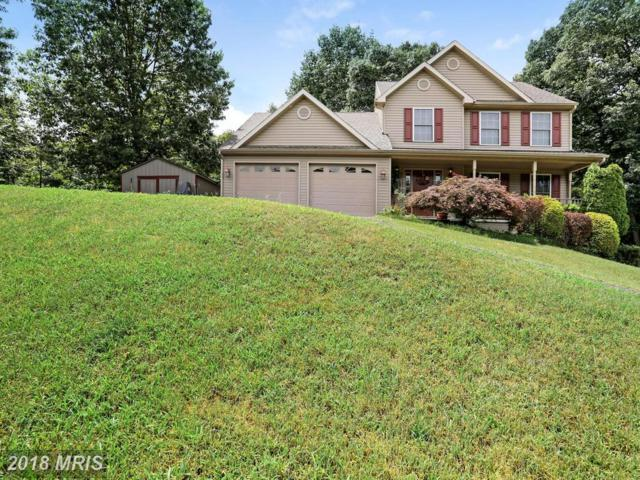 292 Forevergreen Drive, Falling Waters, WV 25419 (#BE10286294) :: Pearson Smith Realty