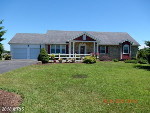 167 Spartan Drive, Martinsburg, WV 25403 (#BE10291701) :: Pearson Smith Realty