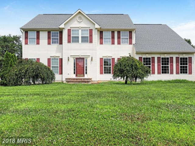 45 Conewago Court, Falling Waters, WV 25419 (#BE10291933) :: Bob Lucido Team of Keller Williams Integrity