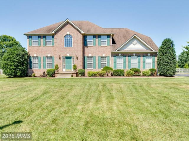 99 Quaint Swan Dale Drive, Martinsburg, WV 25404 (#BE10293372) :: Pearson Smith Realty